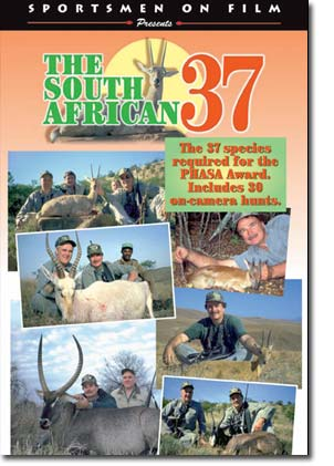 South African 37